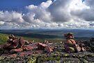 View on Fulufjället by Jo Nijenhuis