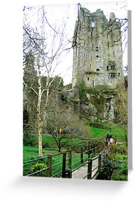 Blarney Castle, Ireland by valerieparent