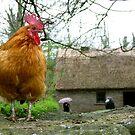 Conquering Chicken by valerieparent
