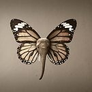 Elefly by Kitty Bitty
