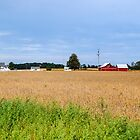 East Central Indiana Farm by Bryan D. Spellman