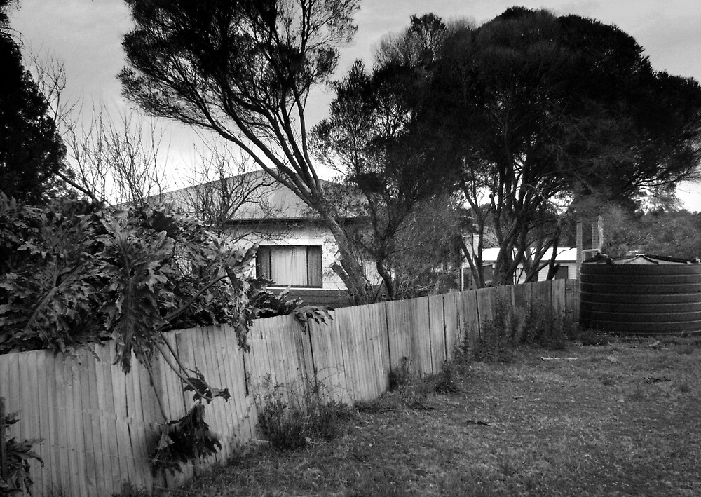 the side fence by adam pearson