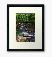NATURE SCENE Framed Print