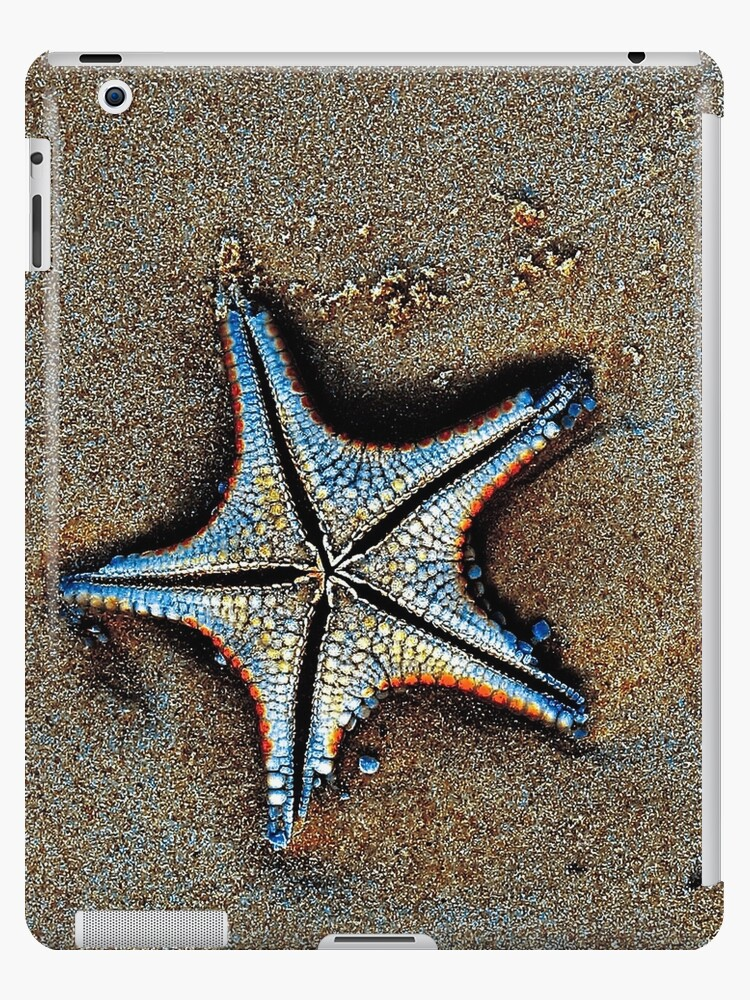 Starfish for your iPad by Mike van der Hoorn
