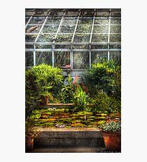 The Greenhouse II Photographic Print