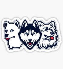 Uconn Huskies Pack Sticker
