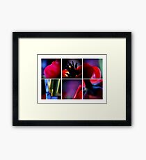 VII Framed Print