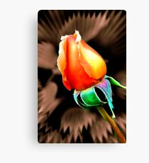 """'Tis the Last  Rose of  Summer."" Canvas Print"