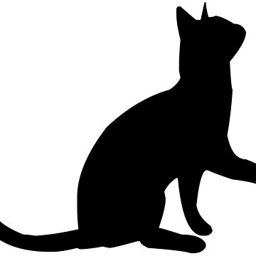 Cat v2 by bearsnightout