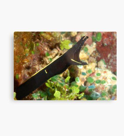 Black Ribbon Metal Print