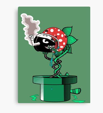 Piranha Bites The Bullet Canvas Print