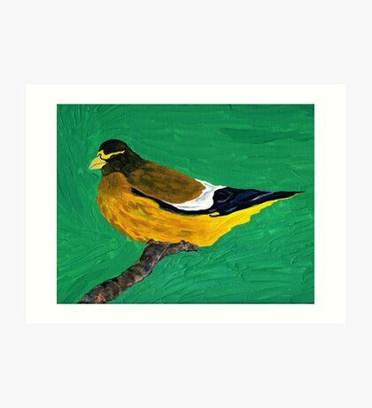 An Evening Grosbeak Art Print