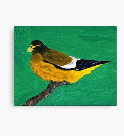 An Evening Grosbeak Canvas Print