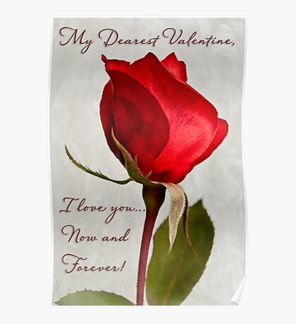 One red rose Valentine card Poster