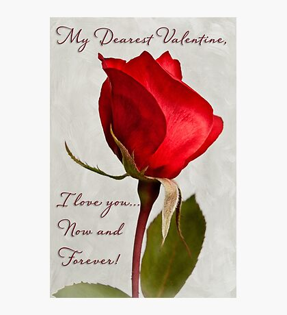 One red rose Valentine card Photographic Print