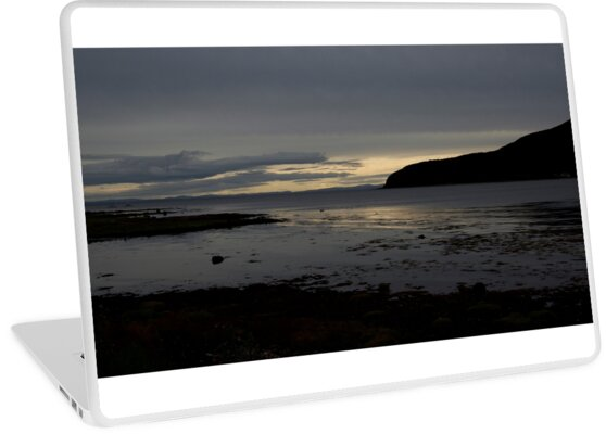Holy Isle Arran by Doug Cook
