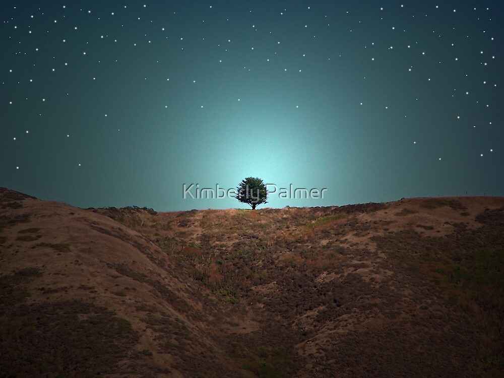 One Tree Hill by Kimberly Palmer