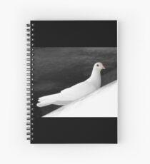 Coo, Coo Coo Spiral Notebook
