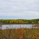 Horseshoe Lake, Sask. Canada Beautiful Autumn Colors by MaeBelle