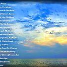 A Sea Of Silence  by Littlehalfwings