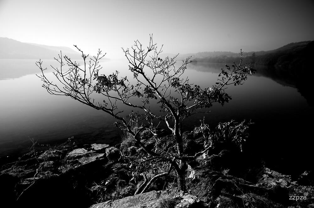 lakeshore2 by zzpza
