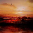 Sunset Passion by EnchantedDreams