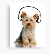 Headphone Yorkie Canvas Print