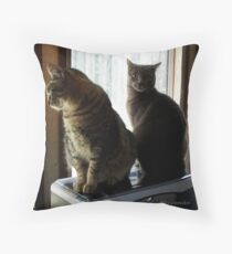 Don't Stare At Us! Throw Pillow