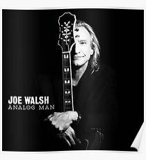 JOE WALSH ANALOG MAN Poster