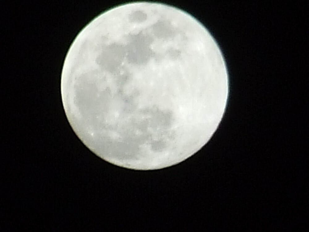 Full Moon by wldman68