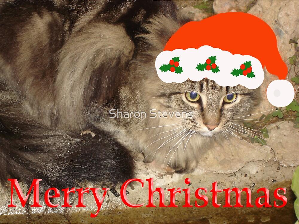 Christmas Cat 1 by Sharon Stevens