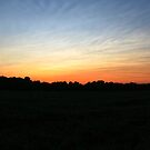 Sunset over the Farm by Corey Williams
