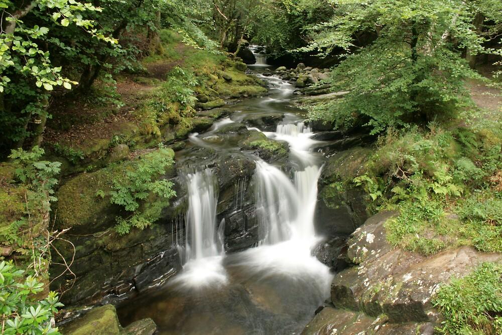 Rapids above Torc waterfall by John Quinn