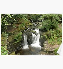 Rapids above Torc waterfall Poster