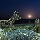 Ghost Dingoes and the Setting Moon by pablosvista2