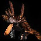 Indian Spirit by Zohar Lindenbaum