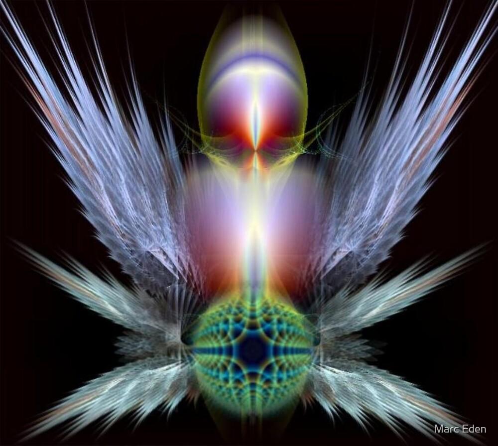 angelillusion by Marc Eden