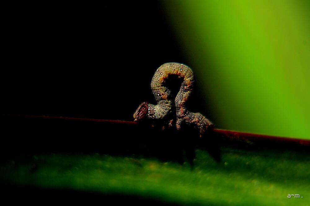 ~Inchworm~ by a~m .