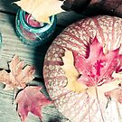 Autumn Leaves and Pumpkin by OLIVIA JOY STCLAIRE