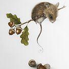 «Ratón y bellotas » de Cuatrogatos