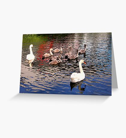 Surrounded With Love Greeting Card