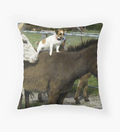 Donkey jockey Throw Pillow