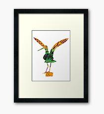 Colourful Godwit Framed Print