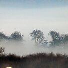 Morning Mist by Trevor Kersley