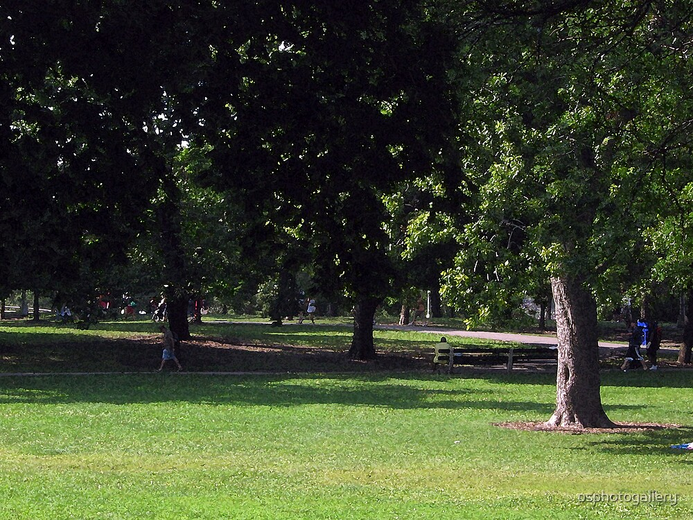 Quiet Day in the Park by psphotogallery