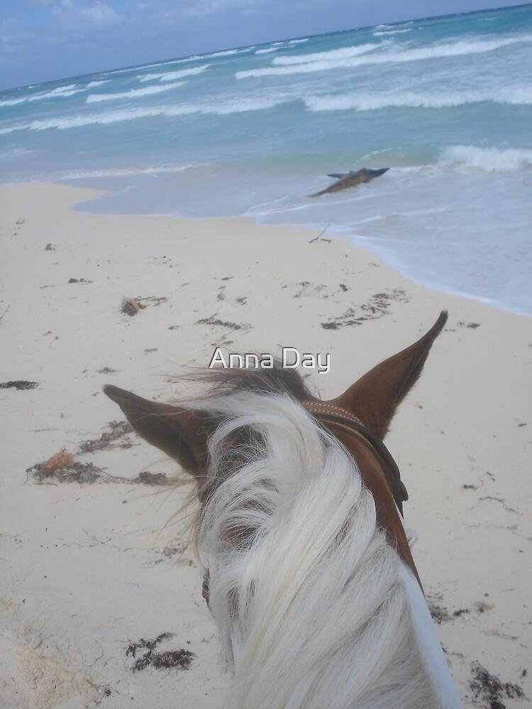 Ocean Ride by Anna Day