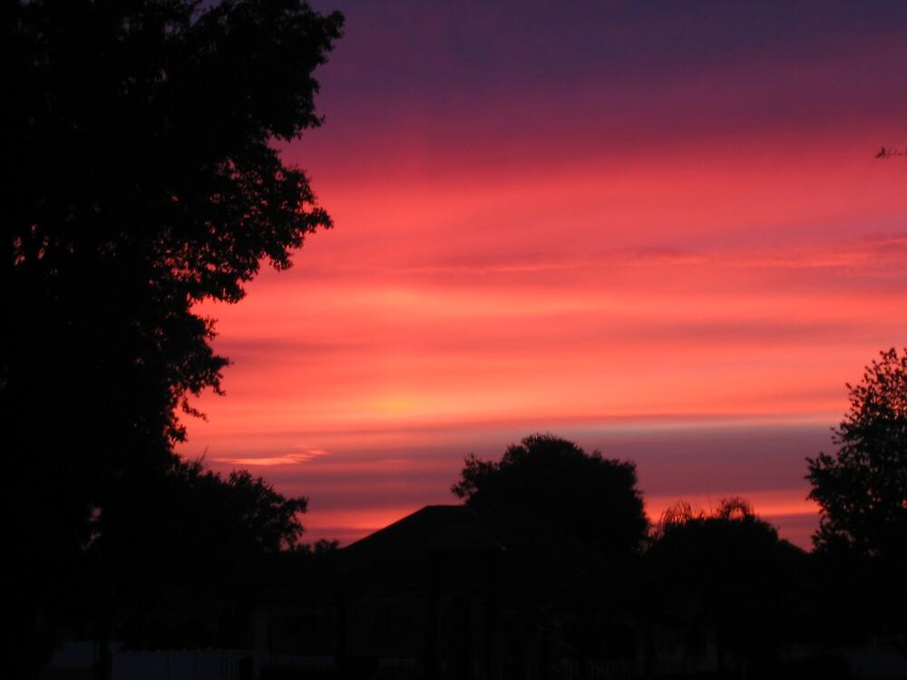 Darkening Evening Sky by fbkohli