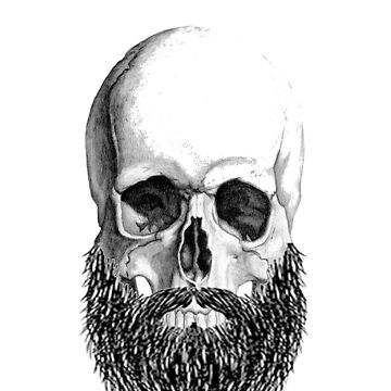 bearded skull by karenMachado