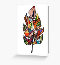 Colorful feather  Greeting Card