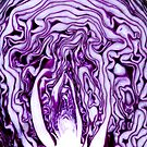 Red Cabbage by VanOostrum